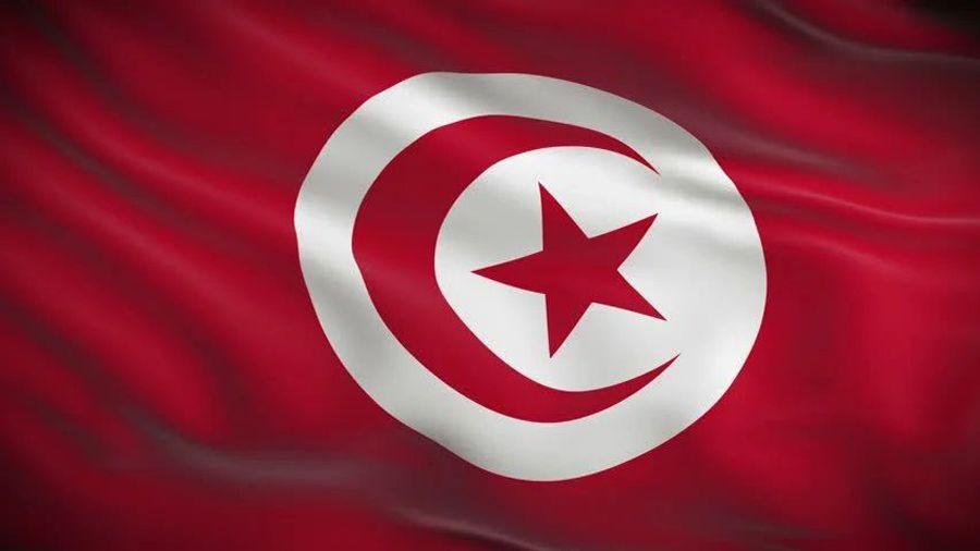 Министр финансов Туниса: «владение биткоином не должно считаться преступлением»