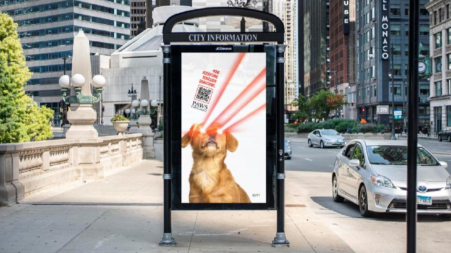 PAWS Chicago начнет принимать пожертвования для бездомных животных в криптовалюте