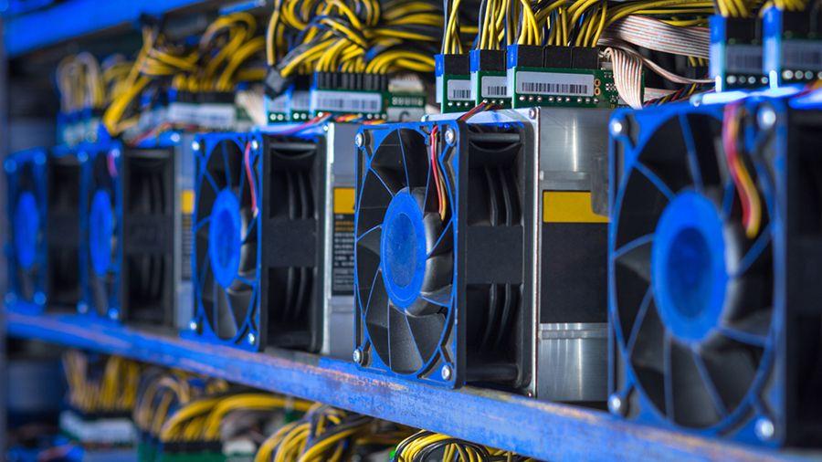 Hive Blockchain купила 3 000 ASIC-майнеров MicroBT