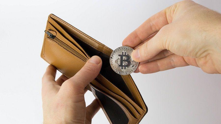 The Block: количество кошельков с балансом более $10 млн в BTC достигло 4 500