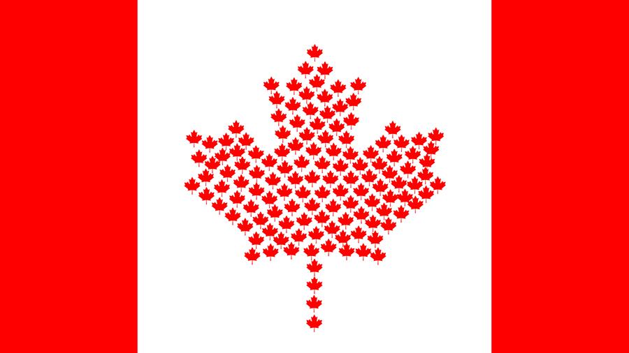 Канадские регуляторы вынесли на обсуждение нормативную базу для бирж криптовалют
