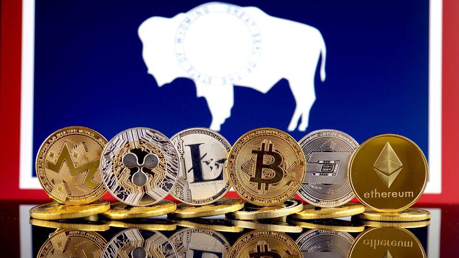 Штат Вайоминг представил правила хранения криптовалют для финансовых организаций