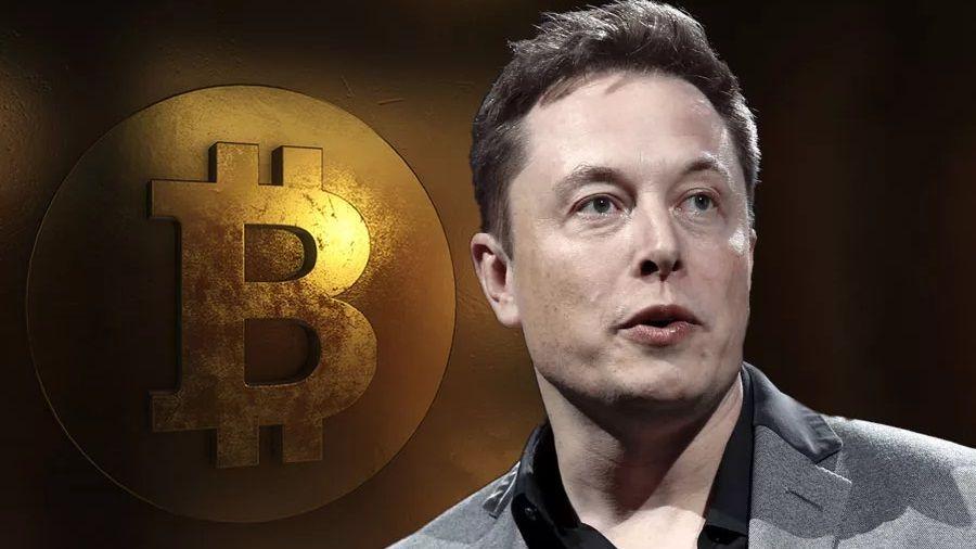 Илон Маск посоветовал властям США отказаться от регулирования криптовалют