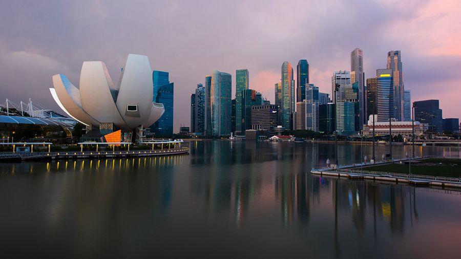 grazhdanina_singapura_oshtrafovali_na_72_000_za_prodvizhenie_kriptovalyutnoy_piramidy_onecoin.jpg