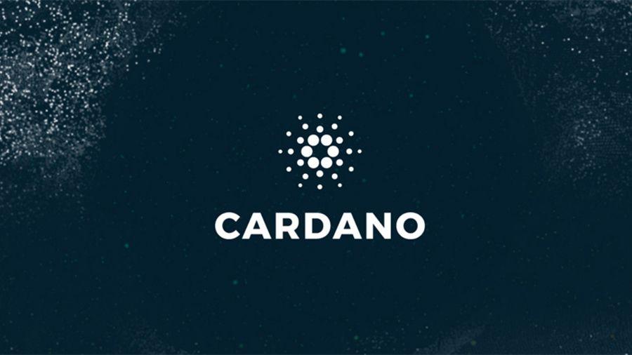 PRIViLEDGE привлек разработчиков Cardano для исследований в области блокчейна
