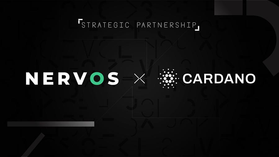 Nervos и Cardano повысят безопасность смарт-контрактов за счет улучшения модели UTXO