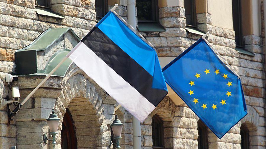 bank_estonii_protestiroval_tsifrovoy_evro_s_drugimi_tsentrobankami_es.jpg