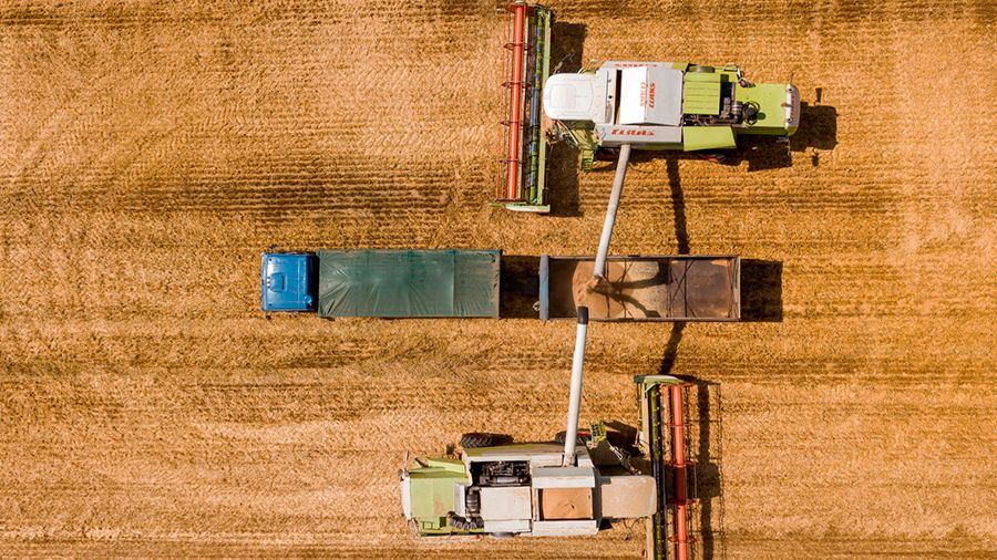 НРД и Россельхозбанк намерены токенизировать складские запасы зерна
