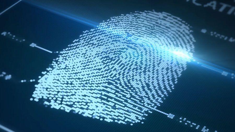 Бермудские острова разработают систему идентификации граждан на блокчейне