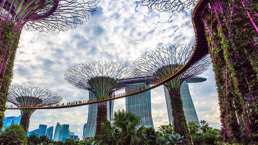Правительство Сингапура поддержало новый акселератор блокчейн-стартапов