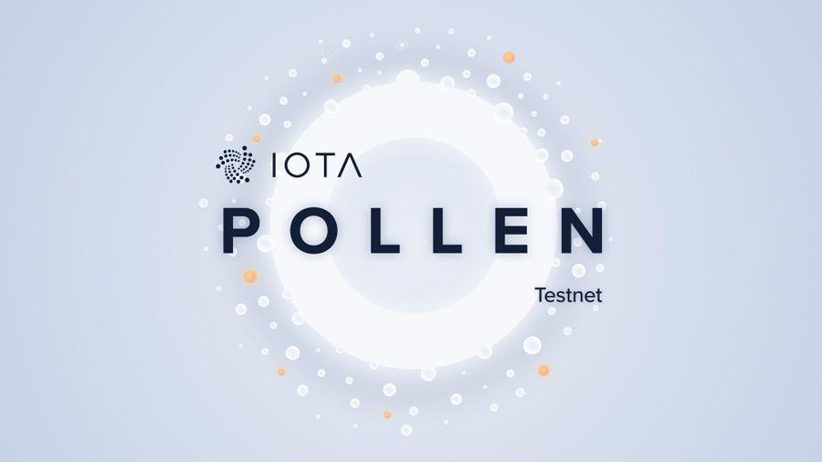 Разработчики IOTA запустили Pollen - первую тестовую сеть IOTA 2.0