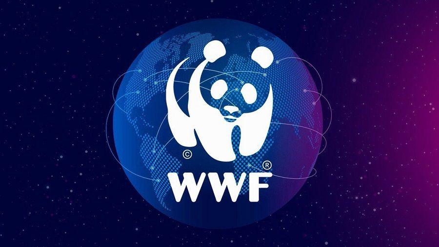 ConsenSys и WWF запустили благотворительную платформу