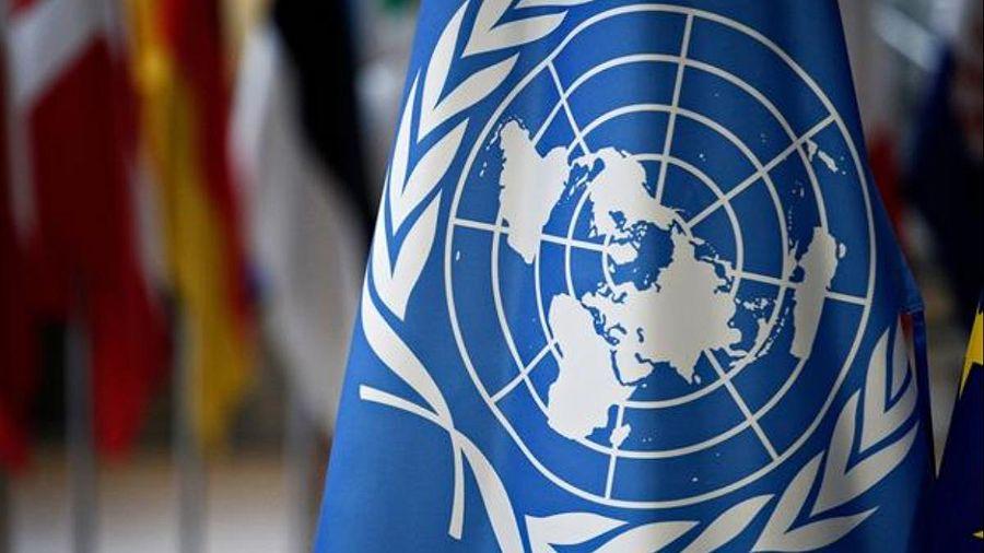ООН использует NFT в инициативе по борьбе с глобальным потеплением
