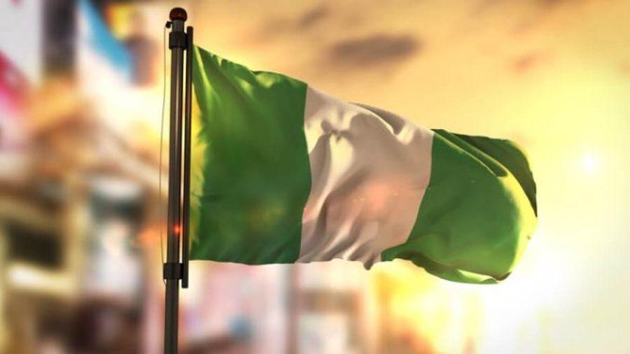 ЦБ Нигерии: «предприятия будут обязаны принимать цифровую найру»