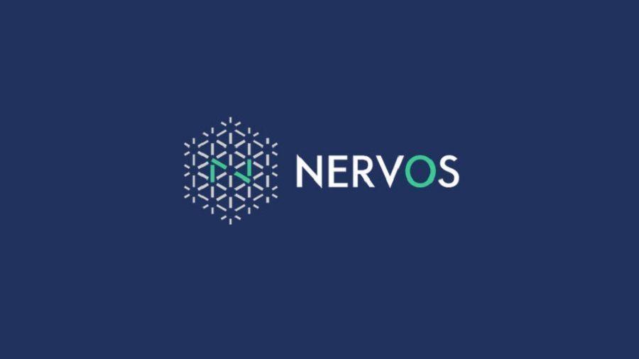 Nervos запустил фонд размером $5 млн для финансирования проектов DeFi
