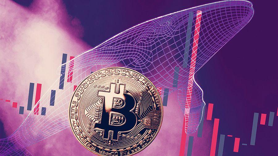 Glassnode: BTC равномерно распределены между «китами» и розничными инвесторами