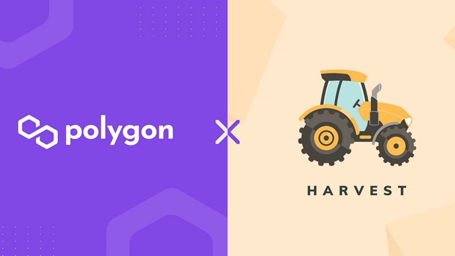Harvest Finance добавляет поддержку решения Polygon