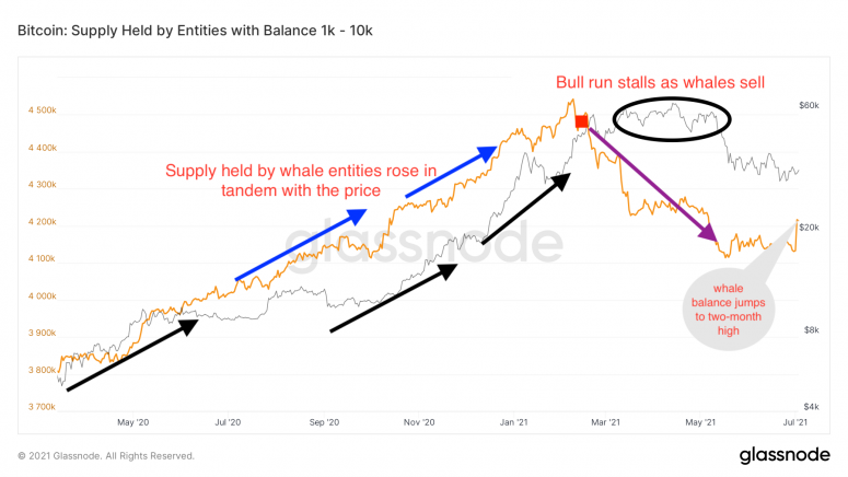 BTC whales new.png
