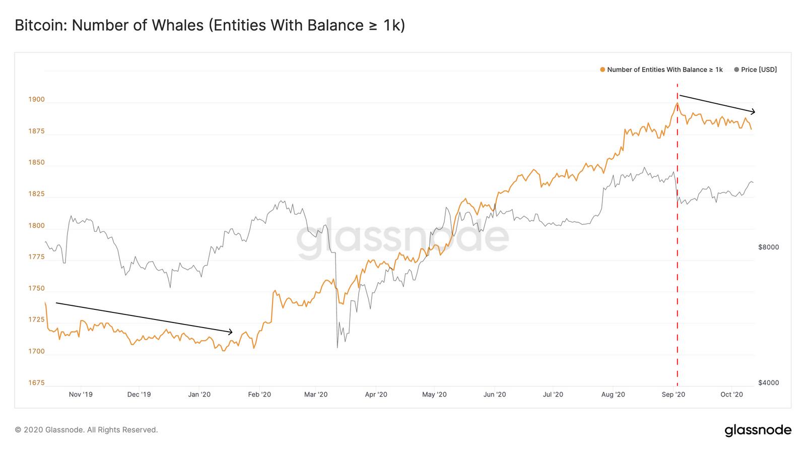 Glassnode: «снижение числа «китов» биткоина может привести к росту цены BTC»